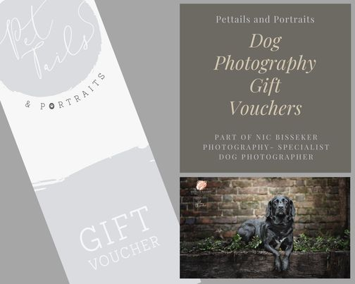 What to buy a dog lover for Father's Day!