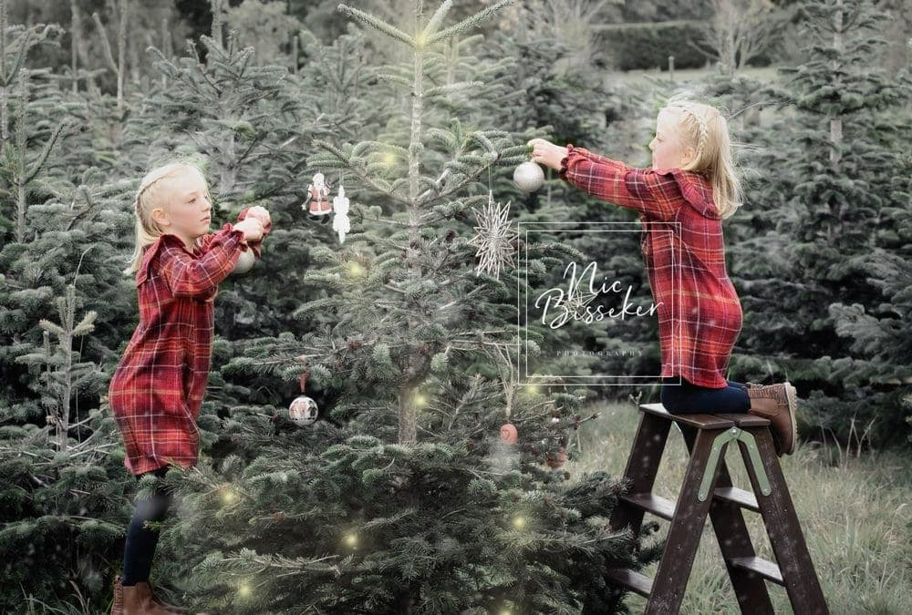Christmas Mini Sessions – Outdoor Christmas Tree Farm – Surrey, Sussex, Kent