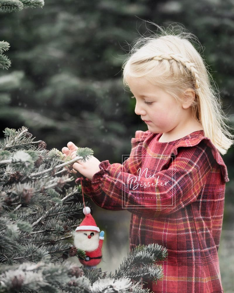 Nic Bisseker Photography Christmas minis session Kent