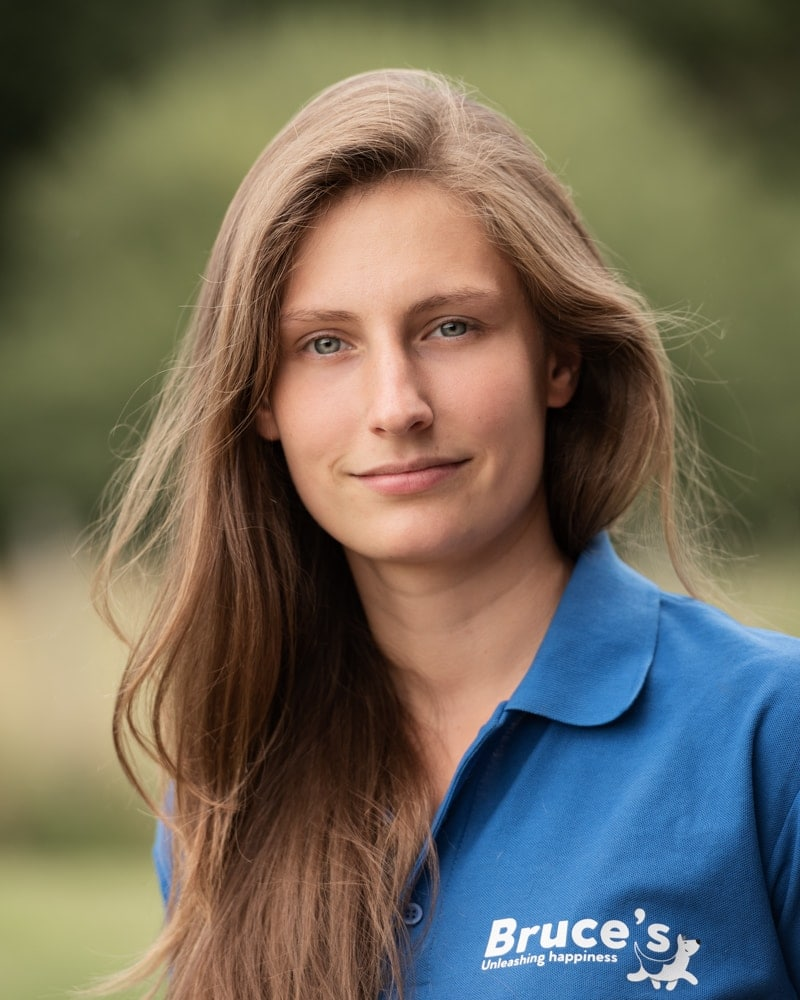 Nic Bisseker Photography business headshots west sussex